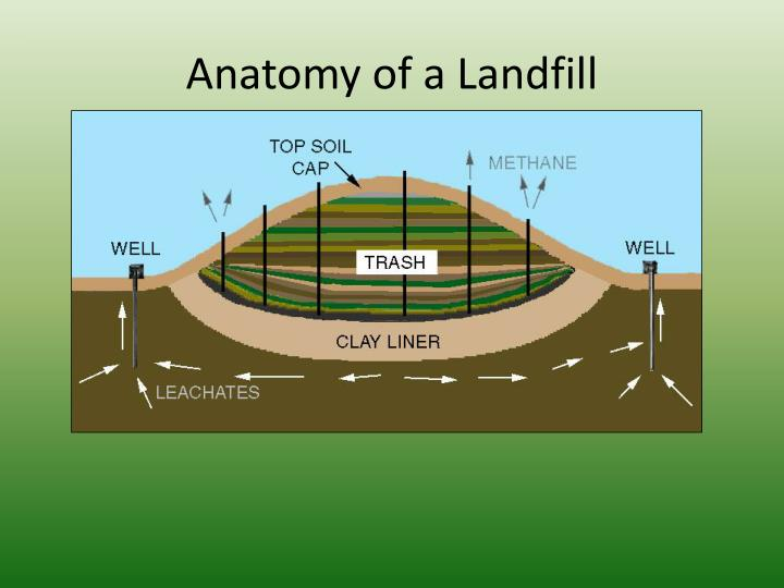 Ppt Composting Natures Lifecycle Everything Returns To The