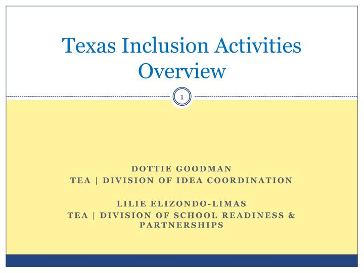 texas inclusion activities overview n.