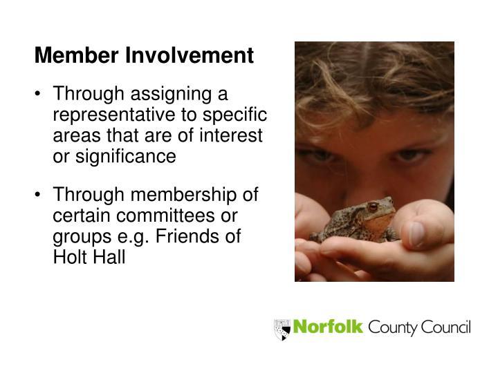 Member Involvement
