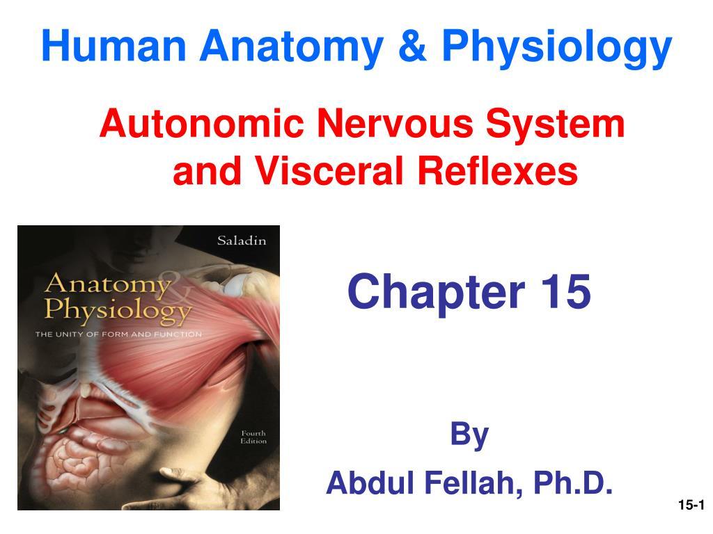 PPT - Human Anatomy & Physiology PowerPoint Presentation - ID:1801786