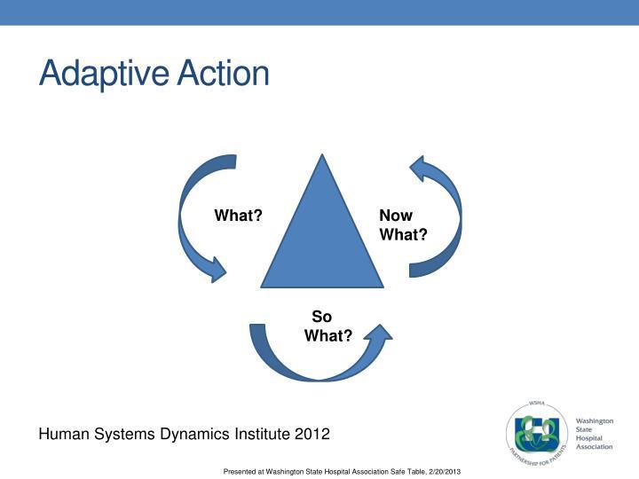 Adaptive Action