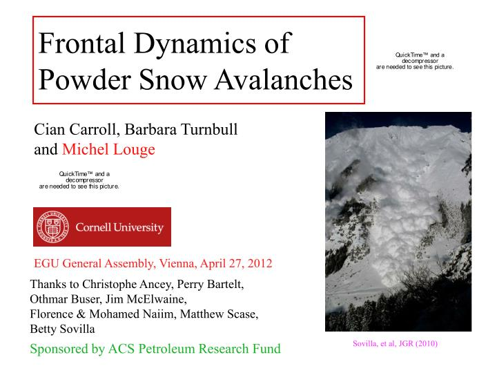 frontal dynamics of powder snow avalanches n.