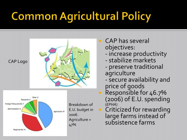 common agricultural policy cap essay Cap in th e21st century common agricultural policy (cap) has been the most criticized european community policy (ec) the european union (eu) is the worlds largest agricultural importer and the worlds second largest exporter.
