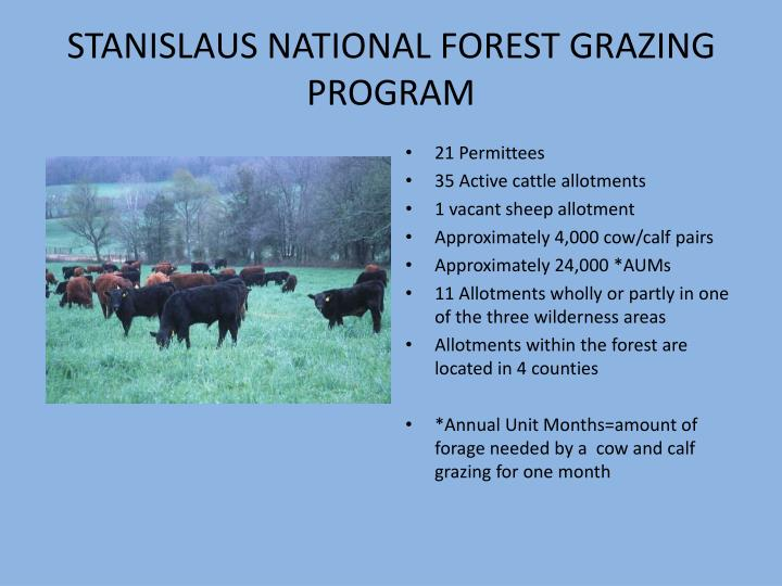 STANISLAUS NATIONAL FOREST GRAZING PROGRAM