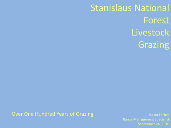 Stanislaus national forest livestock grazing