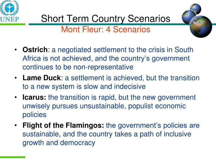 Short Term Country Scenarios