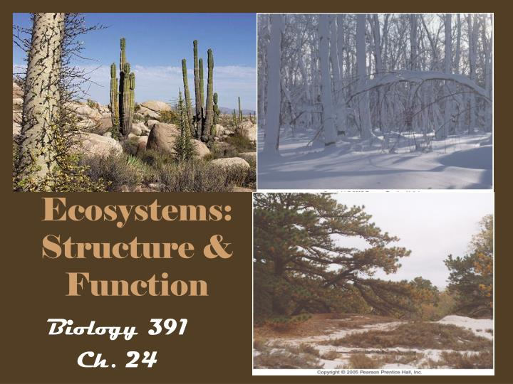ecosystems structure function n.