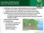 les cycles de nutriments cycle de l azote continu1