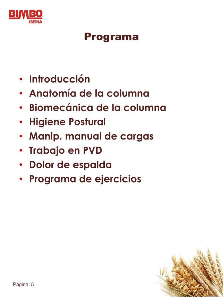 PPT - Escuela de espalda PowerPoint Presentation - ID:1805049