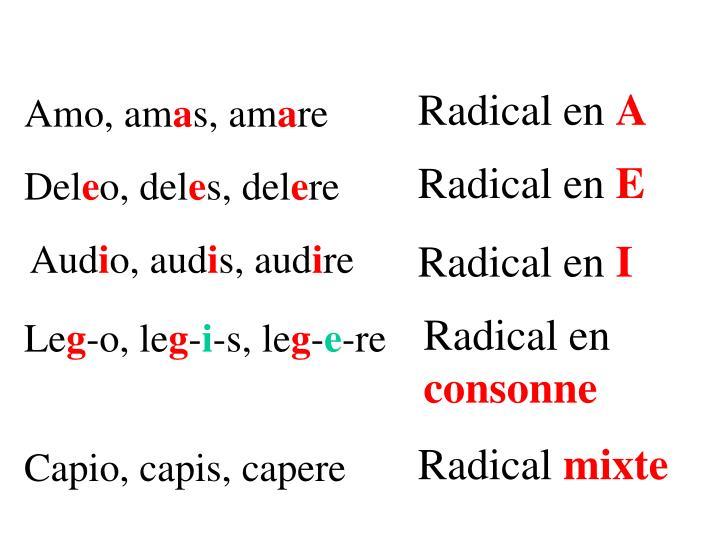 Radical en