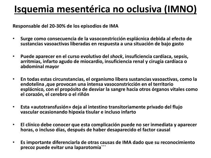 Isquemia mesentérica no oclusiva (IMNO)