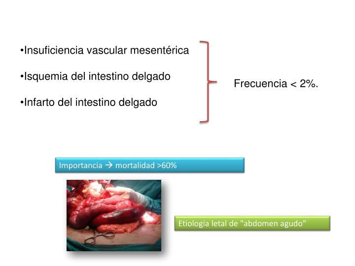 Insuficiencia vascular mesentérica