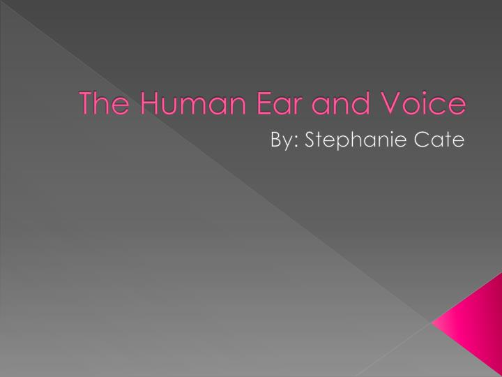 the human ear and voice n.