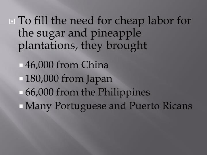 To fill the need for cheap labor for the sugar and pineapple plantations, they brought