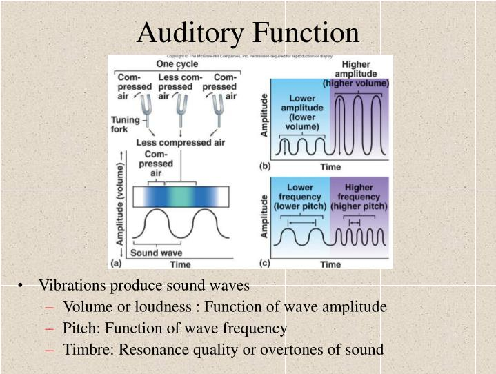 Auditory Function