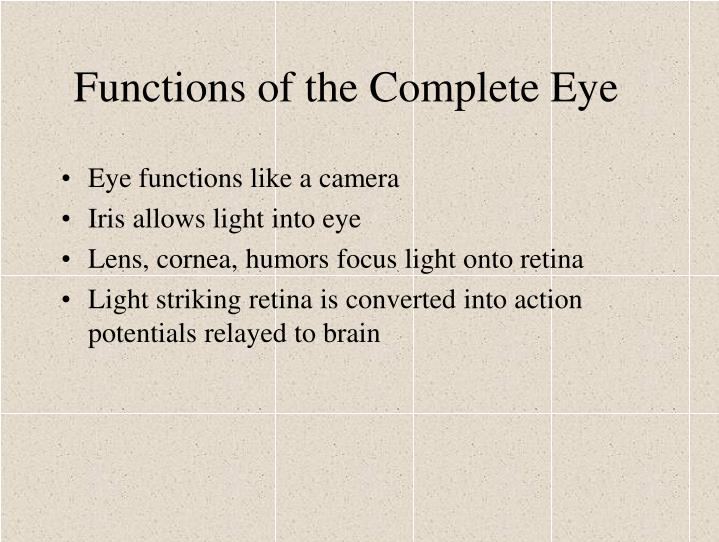 Functions of the Complete Eye