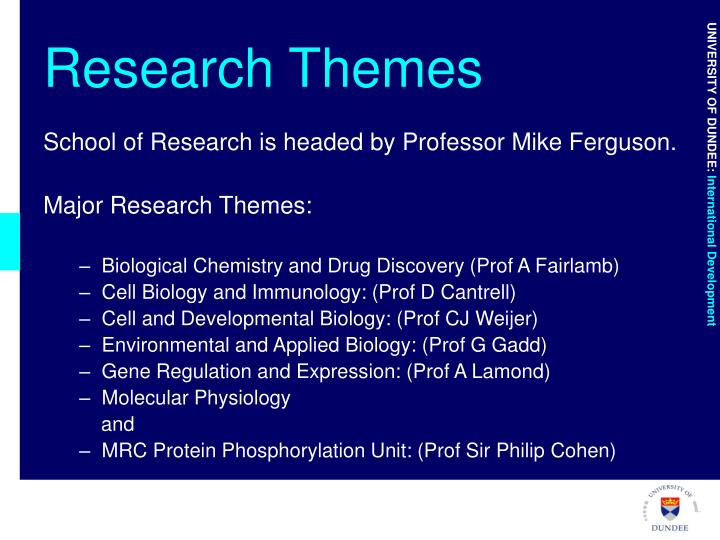 Research Themes