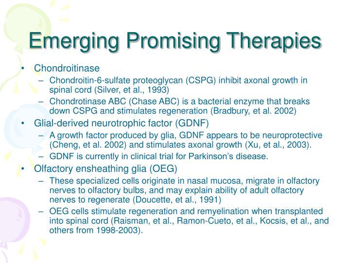 Emerging Promising Therapies