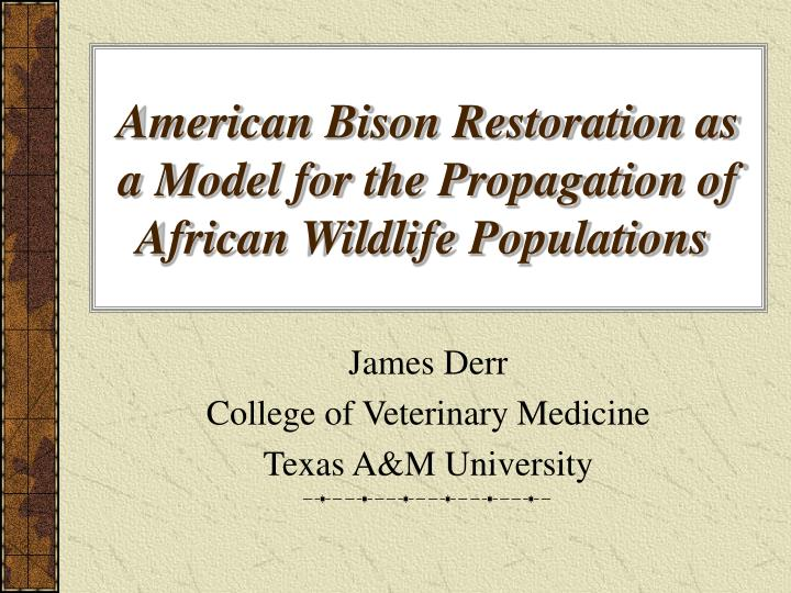 american bison restoration as a model for the propagation of african wildlife populations n.
