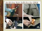 archiving hair follicles for dna