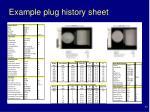 example plug history sheet