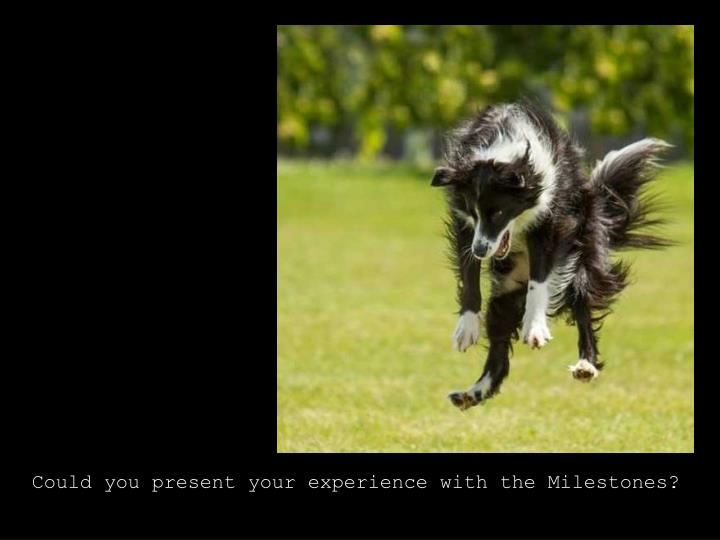 Could you present your experience with the Milestones?