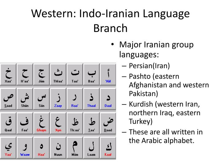 Western: Indo-Iranian Language Branch
