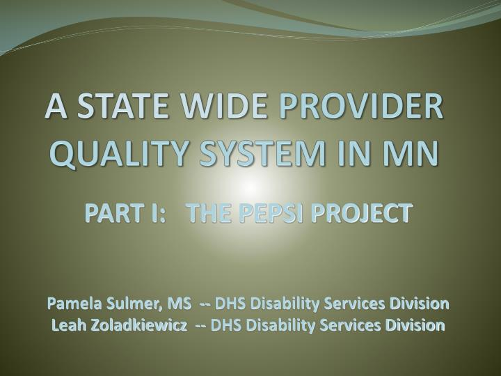 a state wide provider quality system in mn n.
