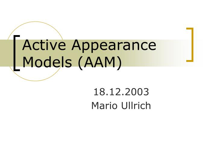 active appearance models aam n.