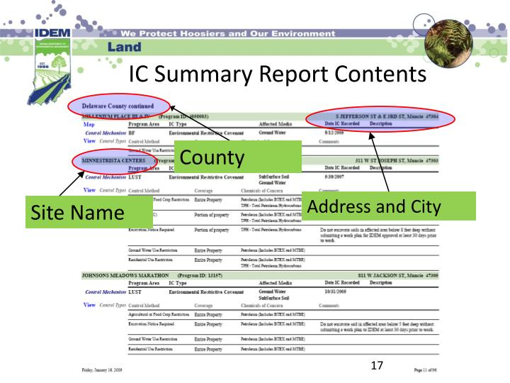 IC Summary Report Contents