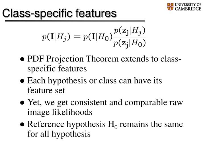 Class-specific features