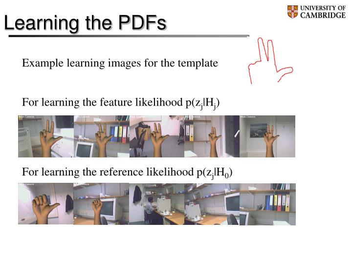 Learning the PDFs