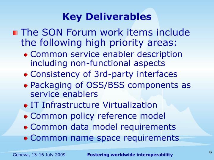 Key Deliverables