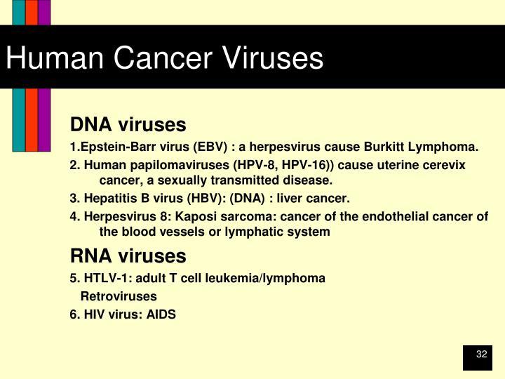 Human Cancer Viruses