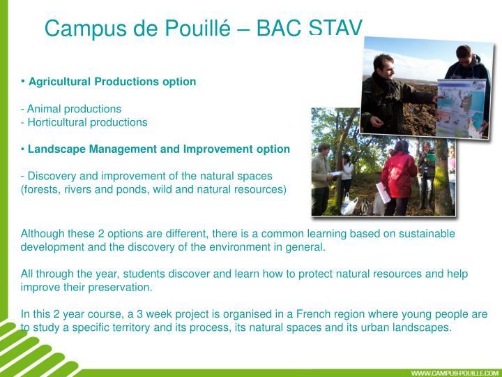 Campus de Pouillé – BAC STAV
