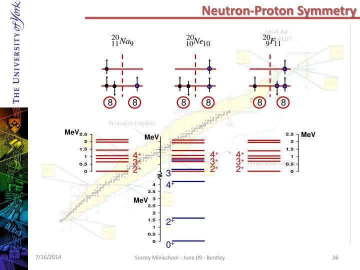 Neutron-Proton Symmetry