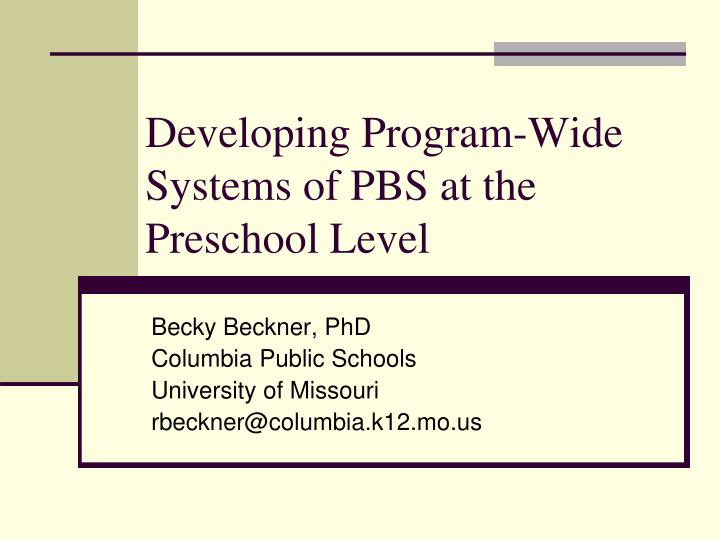 developing program wide systems of pbs at the preschool level n.