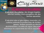 el alcohol y la cafe na