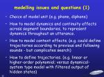 modelling issues and questions 1
