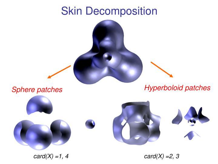 Skin Decomposition