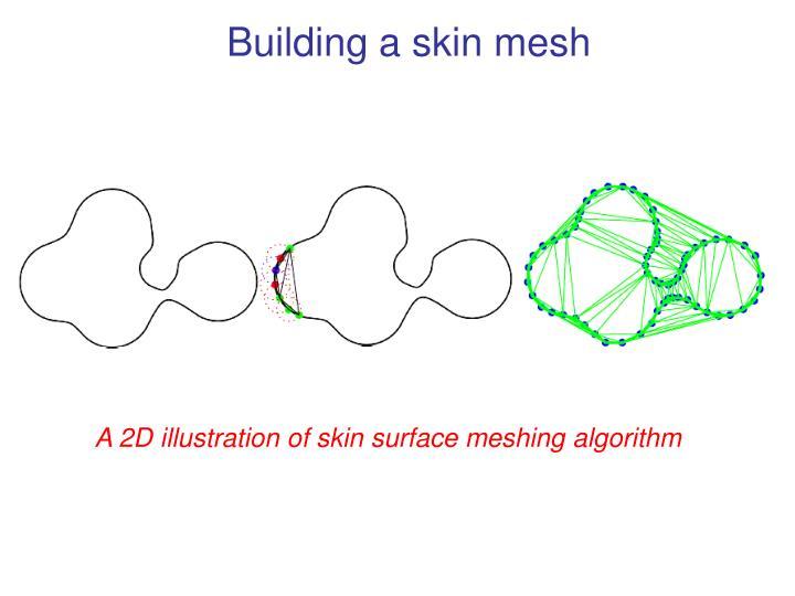 Building a skin mesh