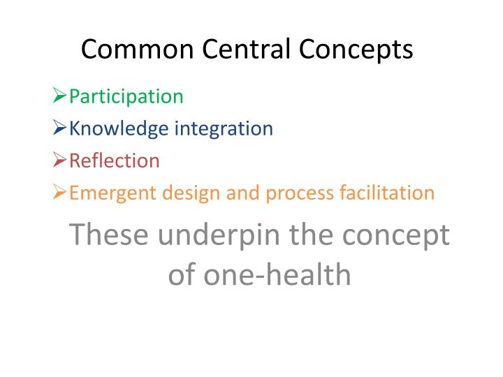 Common Central Concepts
