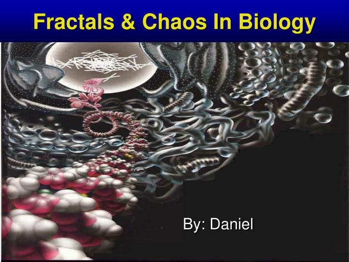 fractals chaos in biology n.