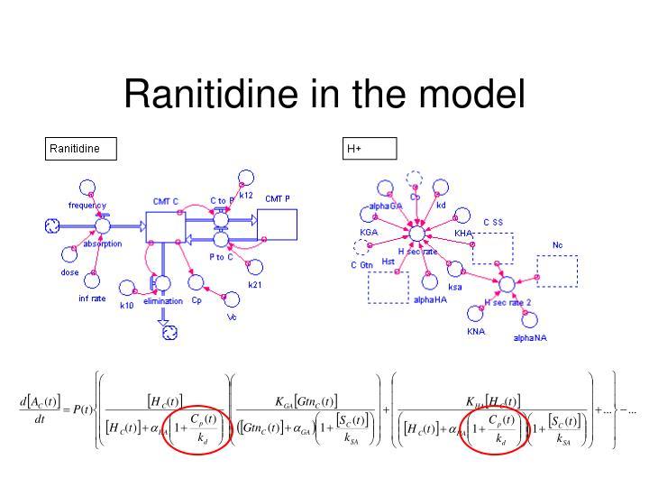 Ranitidine in the model