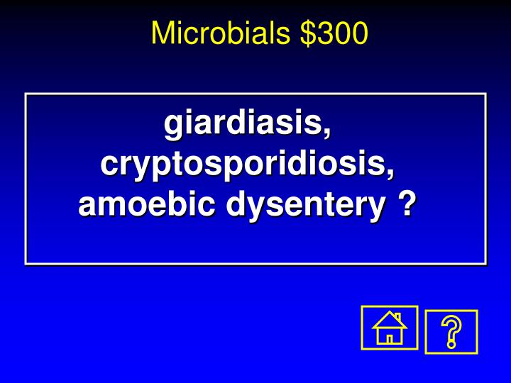 the clinical description of the amebic dysentery Amebic dysentery has a dramatically different clinical presentation the diarrhea is replaced by dysenteric stools consisting largely of pus and blood without feces there is evidence of systemic toxicity with fever, dehydration, and electrolyte abnormalities.