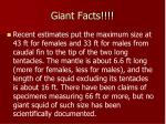 giant facts