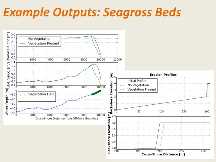 Example Outputs: Seagrass Beds