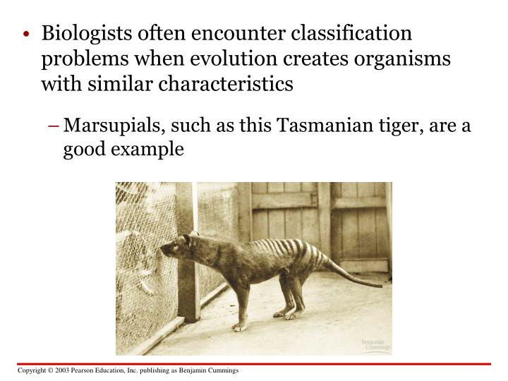 Biologists often encounter classification problems when evolution creates organisms with similar characteristics