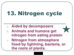 13 nitrogen cycle