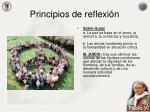 principios de reflexi n4